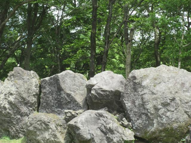 【ジョジョリオンのネタバレ30話】八木山夜露の能力は柱の男と同じ?
